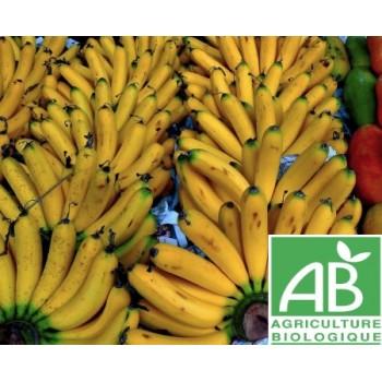 Banane , au Kg