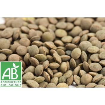 Lentilles sèches , au 250 Gr